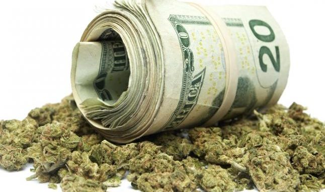weed-and-money-646x381